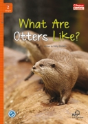 What Are Otters Like? + MP3