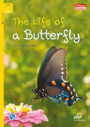 The Life of a Butterfly + MP3